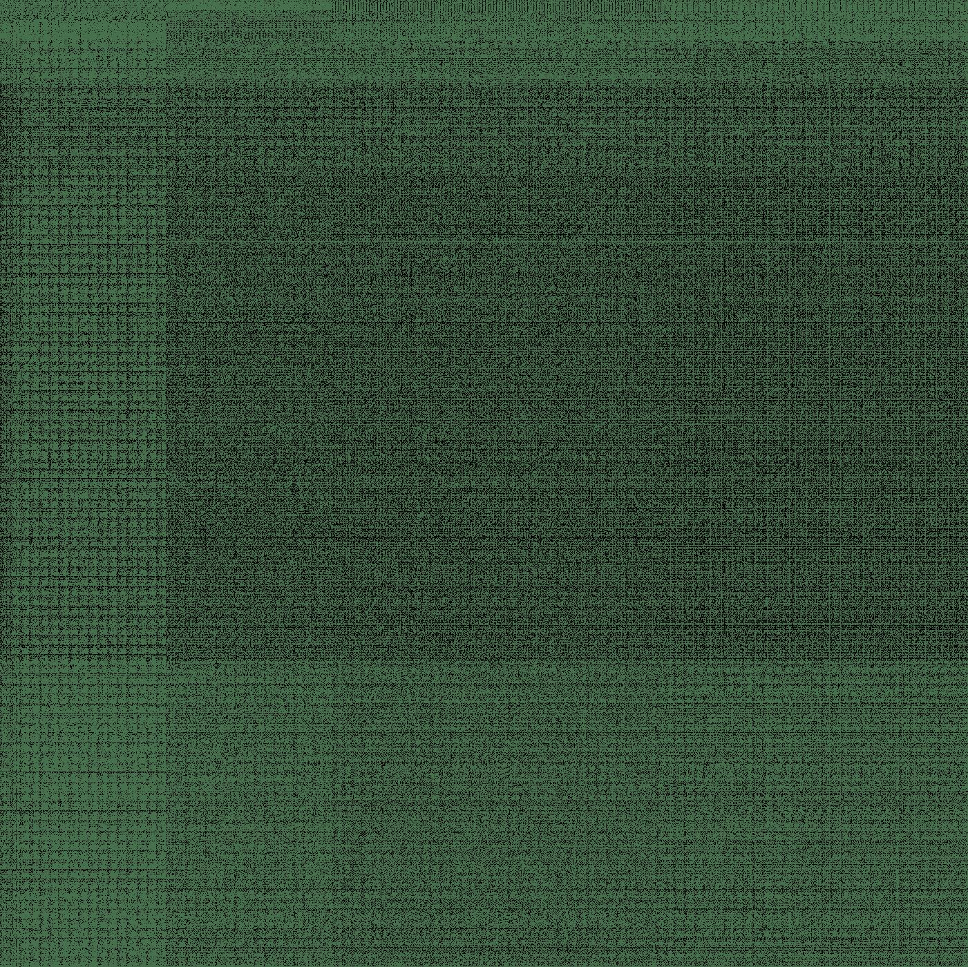 Espárrago M19